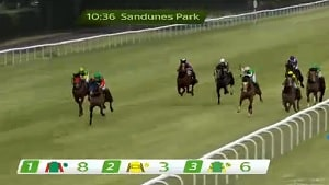 action from a live virtual horse race