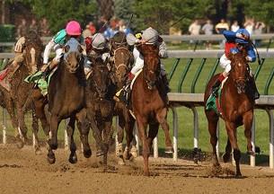 bookies kentucky derby