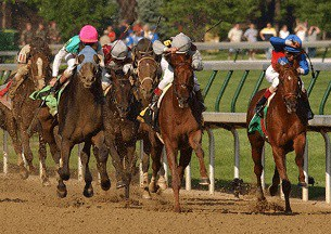 bookies kentucky derby