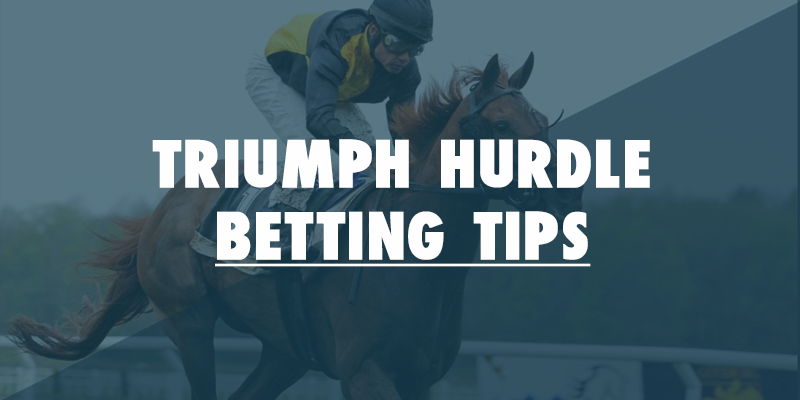 triumph hurdle tips