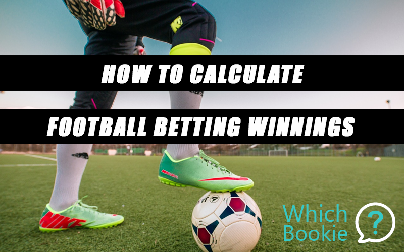 Bet Winnings Calculator