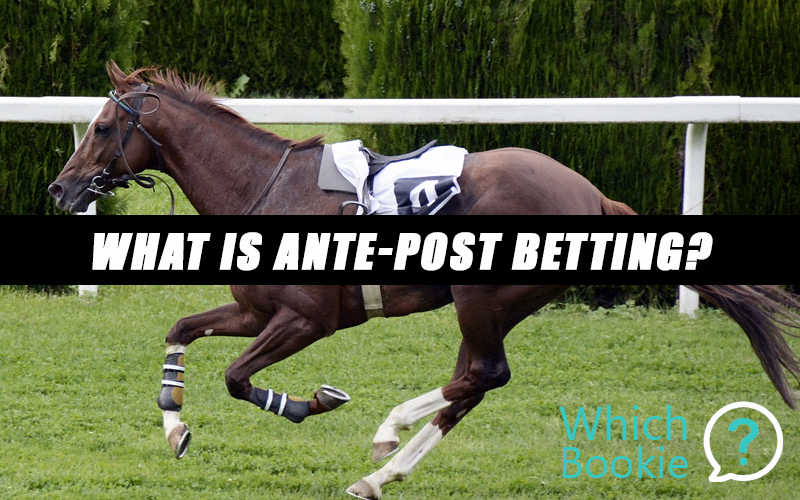Ante post betting rules bet365 uk horse racing betting calculator odds
